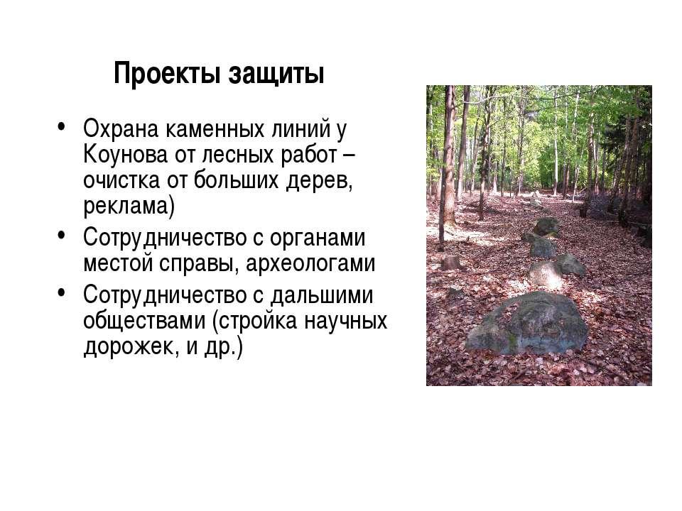 Проекты защиты Охрана каменных линий у Коунова от лесных работ – очистка от б...