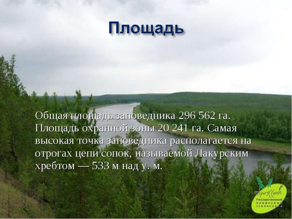 Общая площадь заповедника 296562 га. Площадь охранной зоны 20241 га. Самая ...