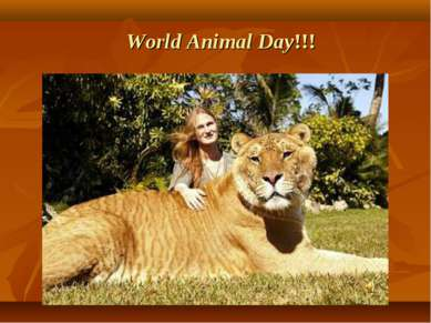 World Animal Day!!!