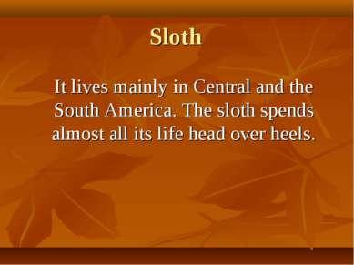Sloth It lives mainly in Central and the South America. The sloth spends almo...