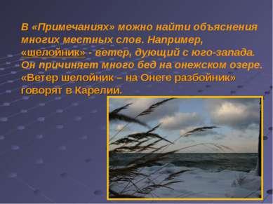 В «Примечаниях» можно найти объяснения многих местных слов. Например, «шелойн...