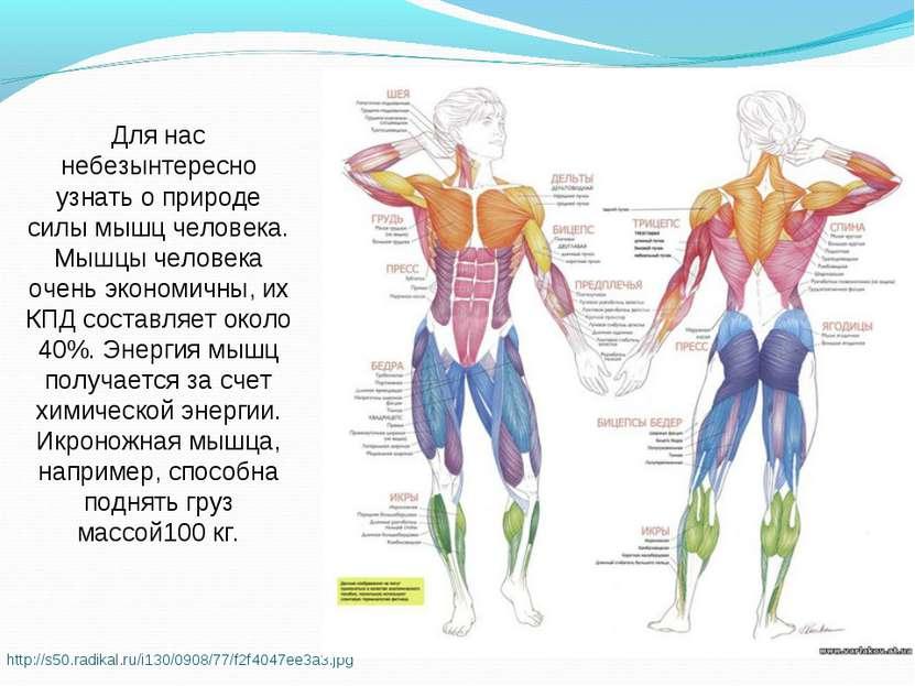 http://s50.radikal.ru/i130/0908/77/f2f4047ee3a3.jpg Для нас небезынтересно уз...