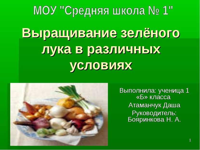 Выращивание зелёного лука в различных условиях Выполнила: ученица 1 «Б» класс...