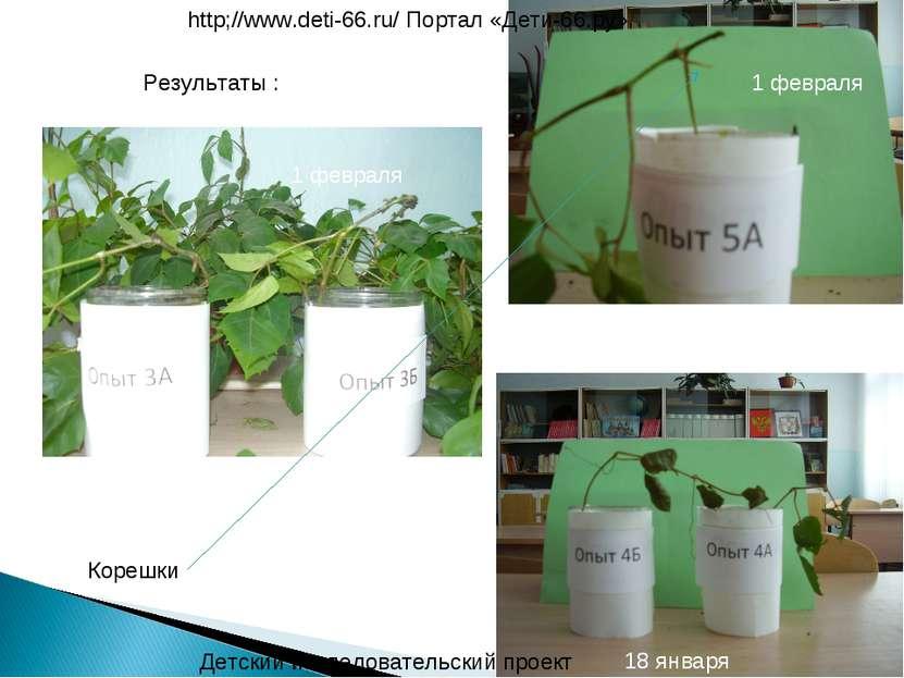 Детский исследовательский проект http;//www.deti-66.ru/ Портал «Дети-66.ру» 1...