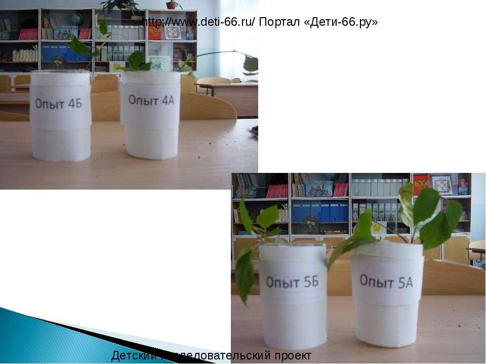Детский исследовательский проект http;//www.deti-66.ru/ Портал «Дети-66.ру»
