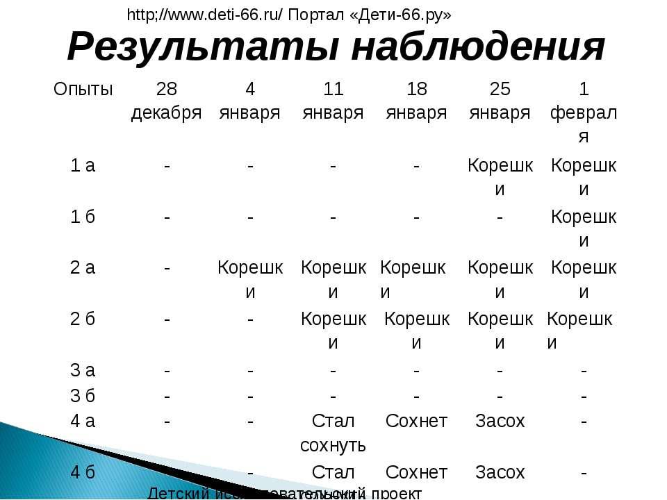 Результаты наблюдения Детский исследовательский проект http;//www.deti-66.ru/...