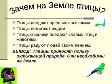 Птицы поедают вредных насекомых. Птицы помогают людям. Птицы-хищники поедают ...