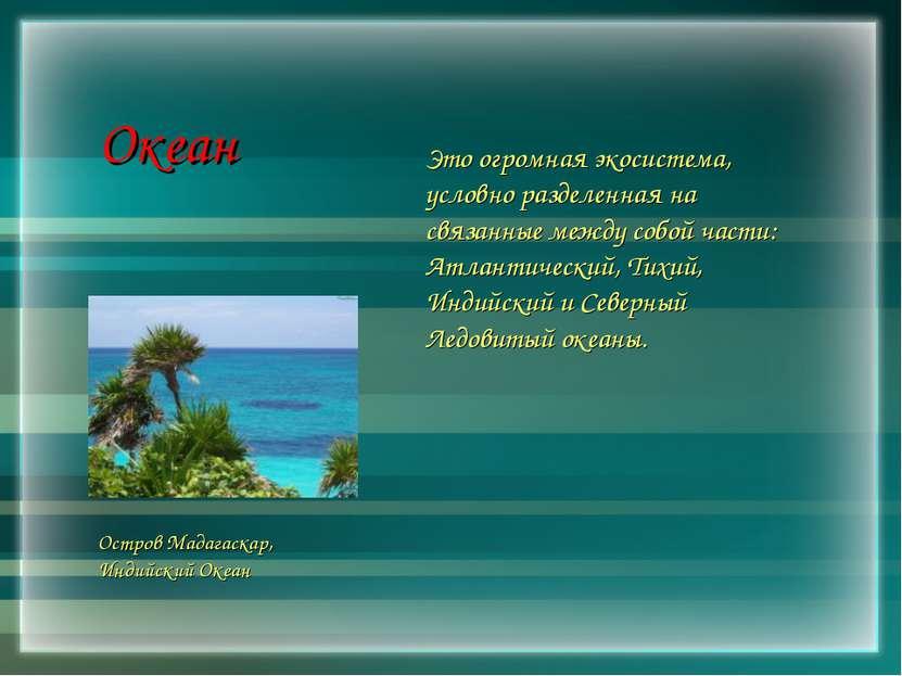 Океан Это огромная экосистема, условно разделенная на связанные между собой ч...