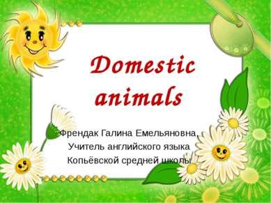 Domestic animals Френдак Галина Емельяновна, Учитель английского языка Копьёв...