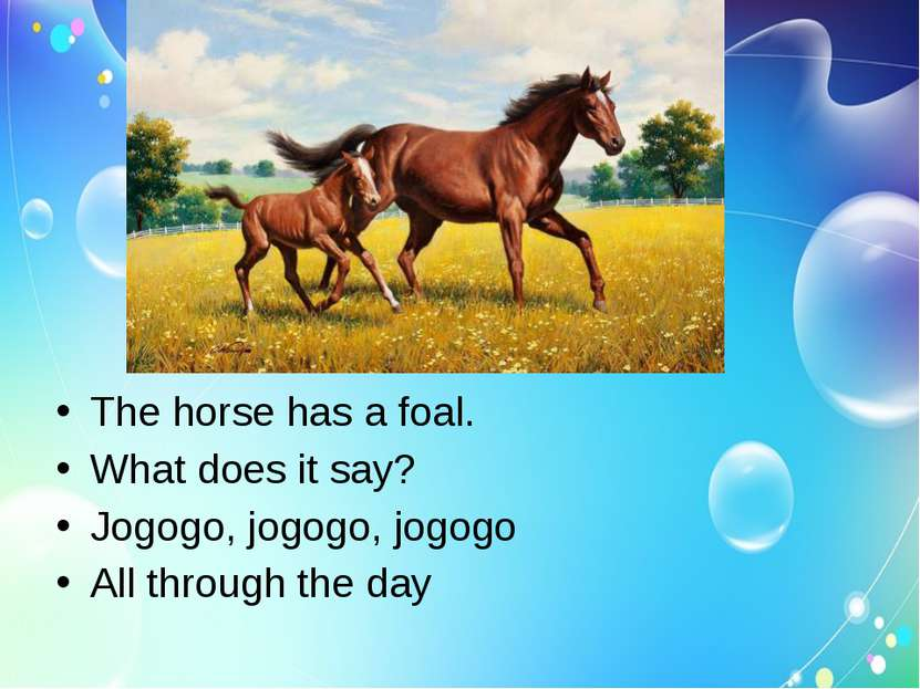 The horse has a foal. What does it say? Jogogo, jogogo, jogogo All through th...
