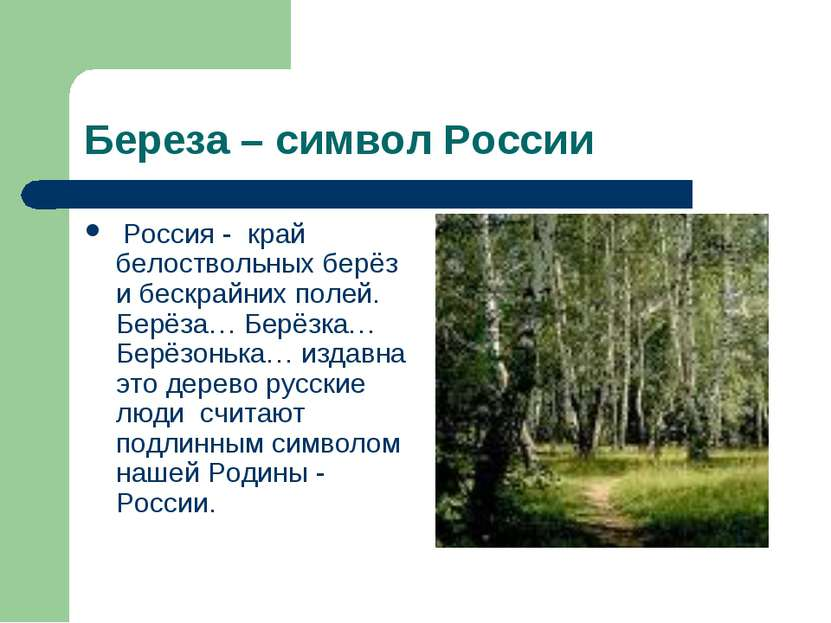 Береза – символ России Россия - край белоствольных берёз и бескрайних полей. ...