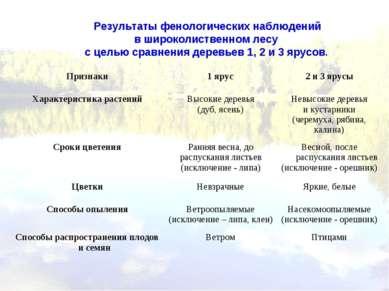 Результаты фенологических наблюдений в широколиственном лесу с целью сравнени...