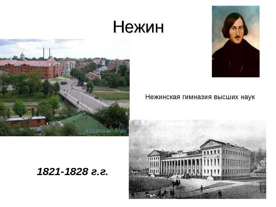 Нежин Нежинская гимназия высших наук 1821-1828 г.г.