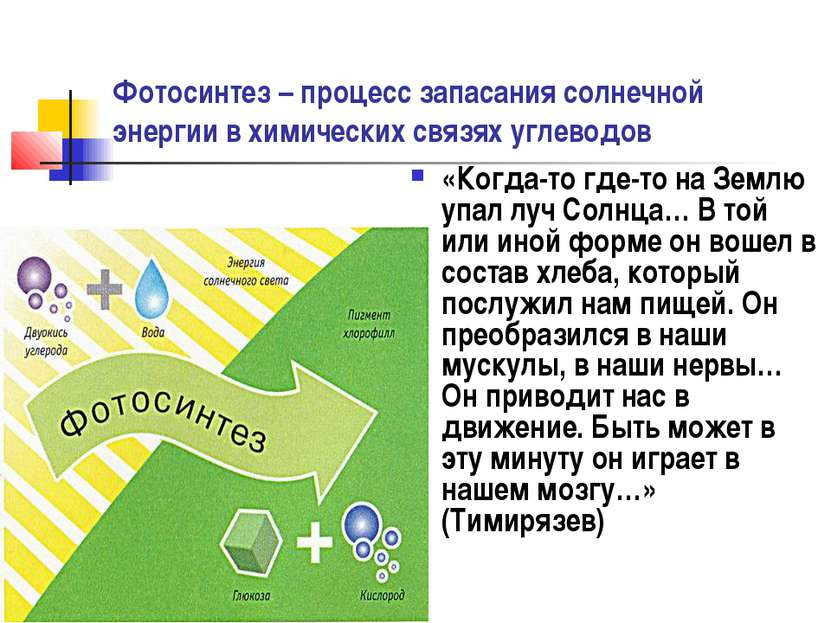 Фотосинтез – процесс запасания солнечной энергии в химических связях углеводо...