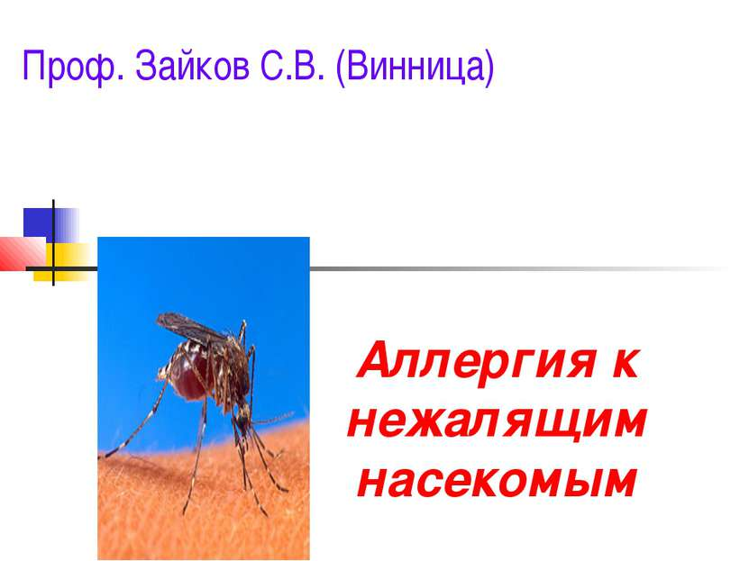 Аллергия к нежалящим насекомым Проф. Зайков С.В. (Винница)