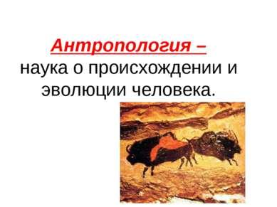 Антропология – наука о происхождении и эволюции человека.
