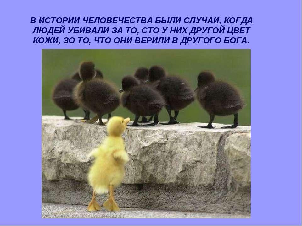 В ИСТОРИИ ЧЕЛОВЕЧЕСТВА БЫЛИ СЛУЧАИ, КОГДА ЛЮДЕЙ УБИВАЛИ ЗА ТО, СТО У НИХ ДРУГ...