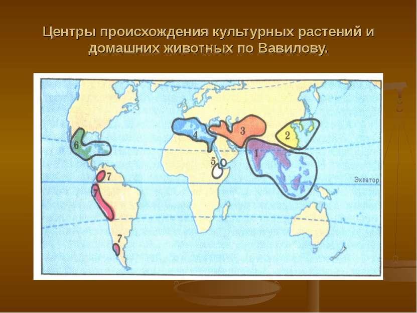 Центры происхождения культурных растений и домашних животных по Вавилову.