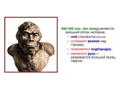 500-100тыс. лет назад меняется внешний облик человека: лоб становится выше, ...