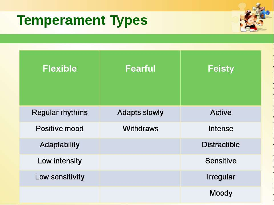 Temperament Types
