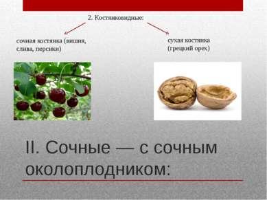 II. Сочные — с сочным околоплодником: 2. Костянковидные: сочная костянка (виш...