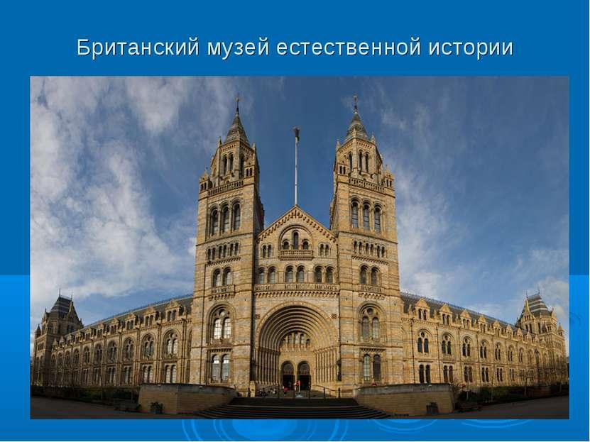 Британский музей естественной истории