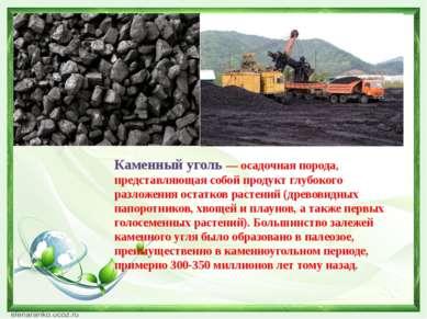 Каменный уголь — осадочная порода, представляющая собой продукт глубокого раз...
