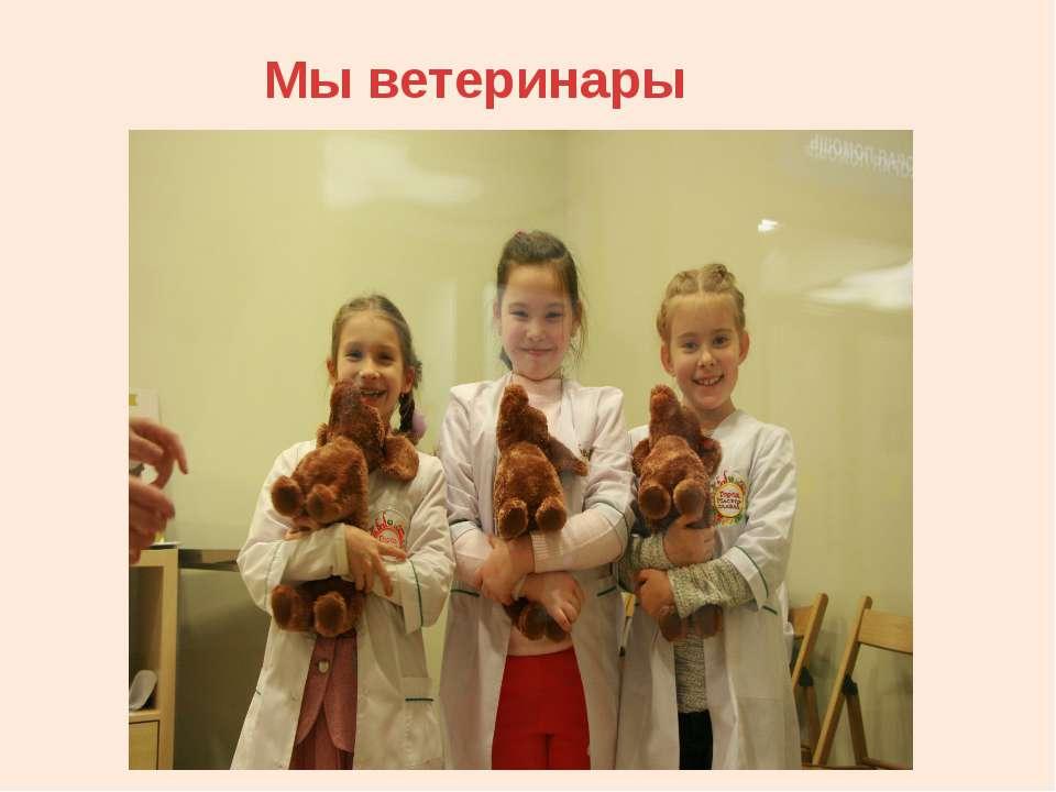 Мы ветеринары
