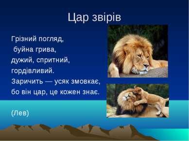 Цар звірів Грізний погляд, буйна грива, дужий, спритний, гордівливий. Заричит...