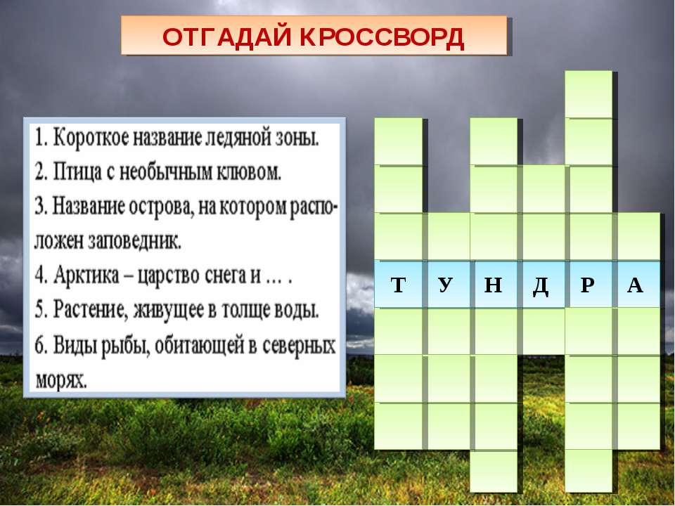 ОТГАДАЙ КРОССВОРД 3 6 5 4 2 1 А Р Д Н У Т