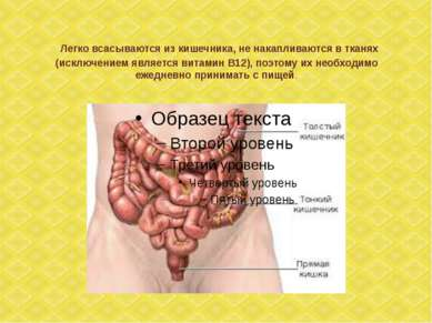 Легко всасываются из кишечника, не накапливаются в тканях (исключением являет...