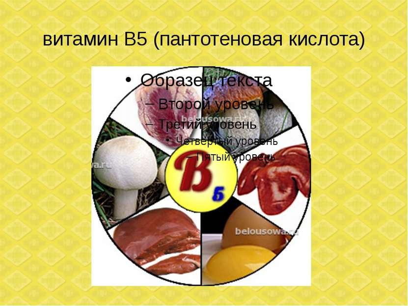 витамин В5 (пантотеновая кислота)