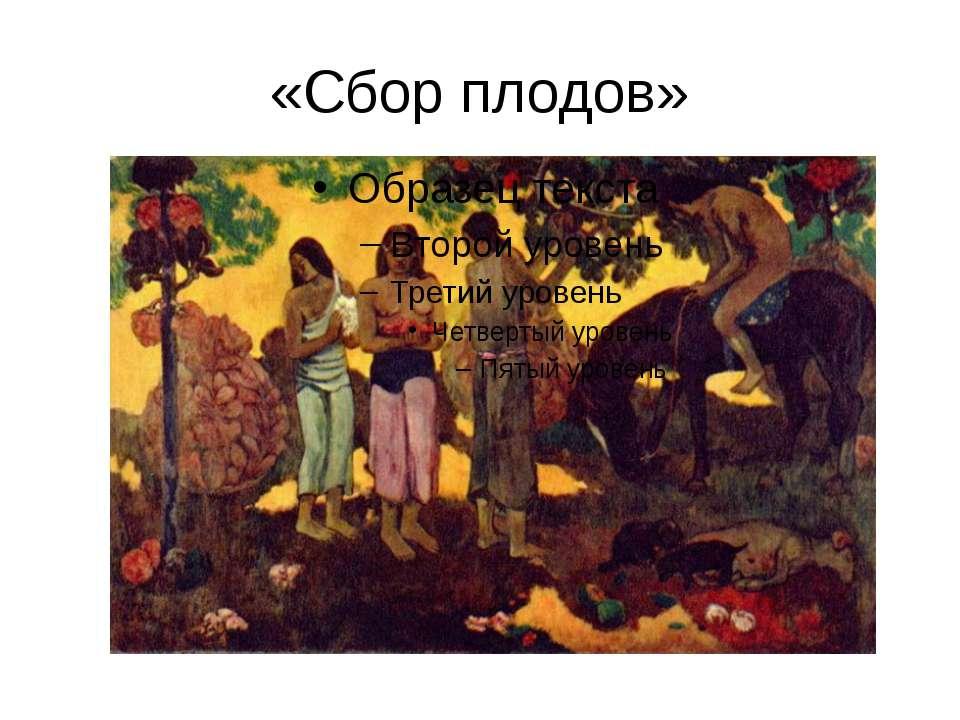 «Сбор плодов»