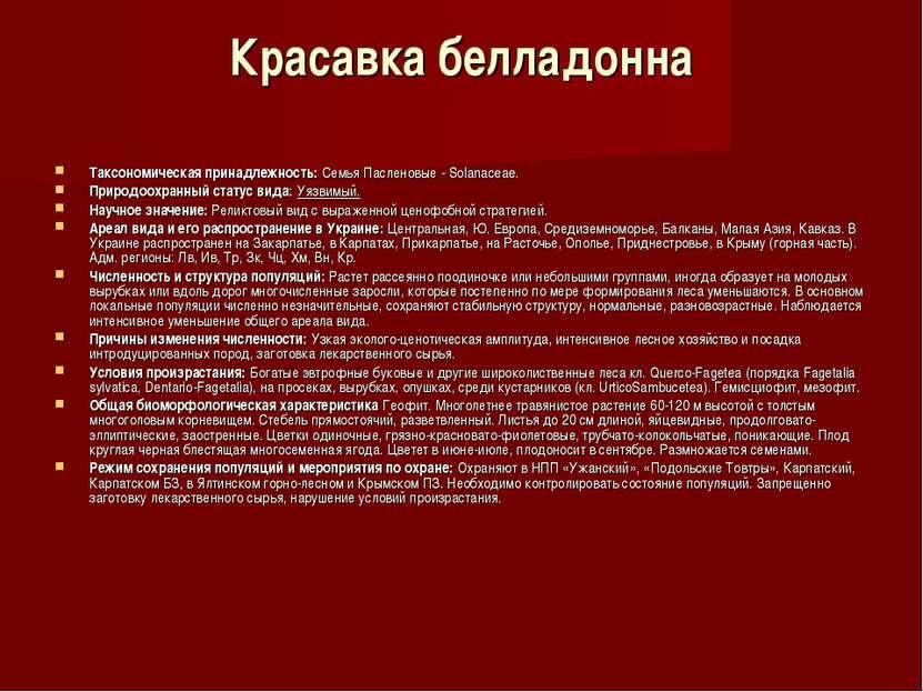 Красавка белладонна Таксономическая принадлежность:Семья Пасленовые - Solana...