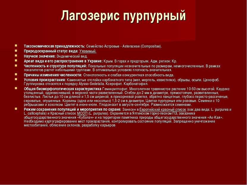 Лагозерис пурпурный Таксономическая принадлежность:Семейство Астровые - Aste...