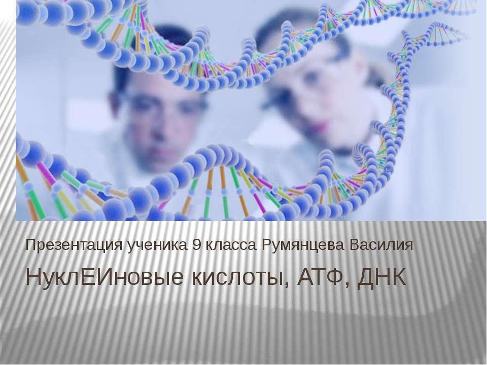НуклЕИновые кислоты, АТФ, ДНК Презентация ученика 9 класса Румянцева Василия