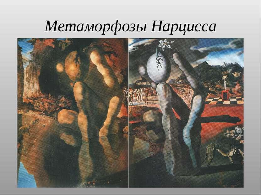 Метаморфозы Нарцисса