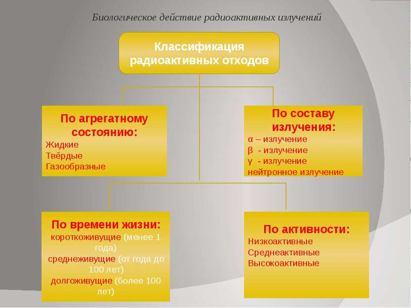 Последствия аварии на Чернобыльской АЭС Биологическое действие радиоактивных ...