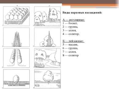 Виды парковых насаждений: А — регулярные: 1 — боскет, 2 — группа, 3 — аллея, ...