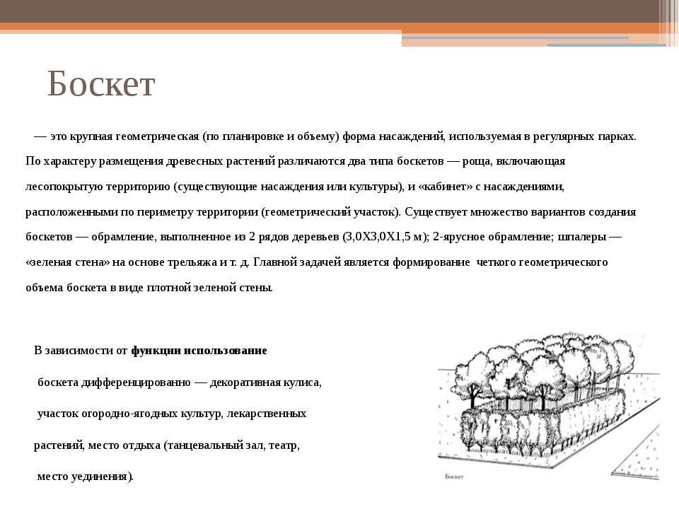 Боскет — это крупная геометрическая (по планировке и объему) форма насаждений...