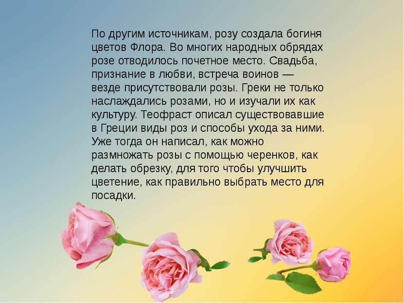 По другим источникам, розу создала богиня цветов Флора. Во многих народных об...