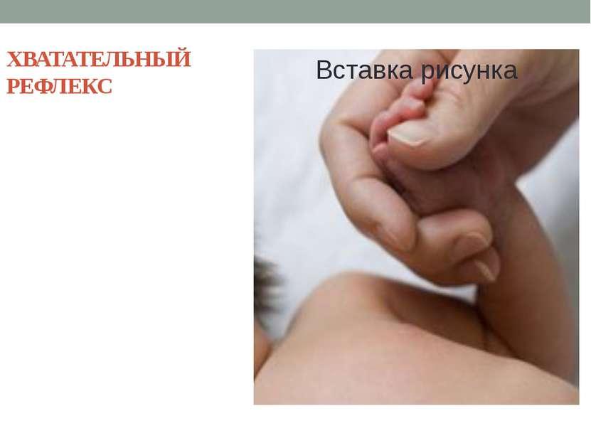 ХВАТАТЕЛЬНЫЙ РЕФЛЕКС Рефлекс, чтобы хвататься за шерсть матери, удерживаться....