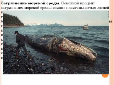 Загрязнение морской среды.Основной процент загрязнения морской среды связан ...