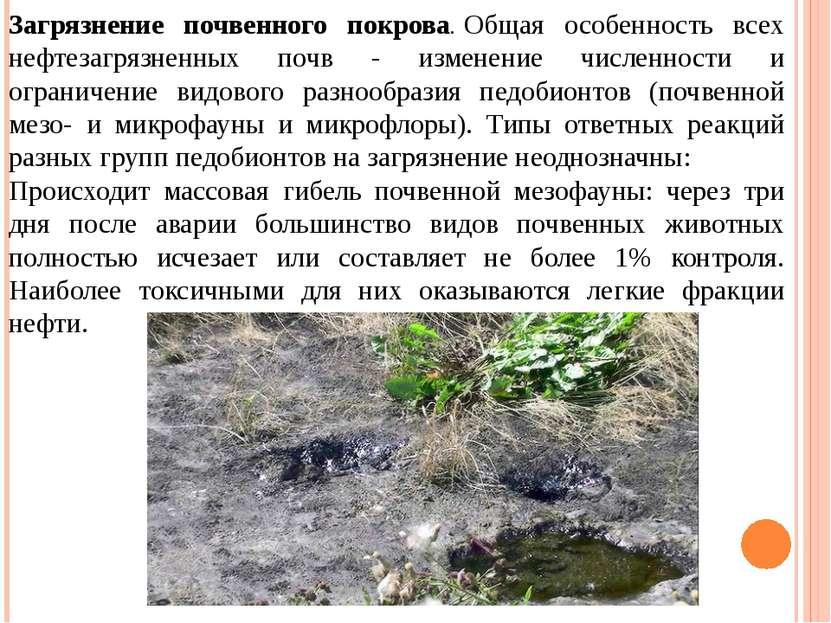 Загрязнение почвенного покрова.Общая особенность всех нефтезагрязненных почв...