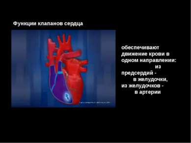 обеспечивают движение крови в одном направлении: из предсердий - в желудочки,...