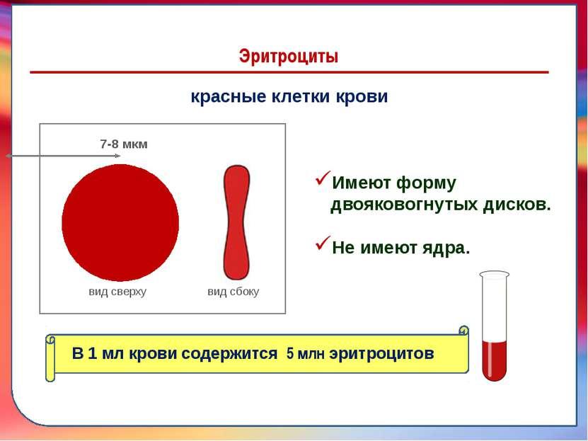 7-8 мкм Эритроциты красные клетки крови вид сверху вид сбоку 7-8 мкм Имеют фо...