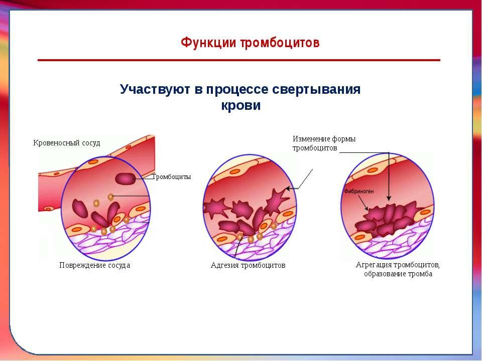 Гипертония 111 риск 4