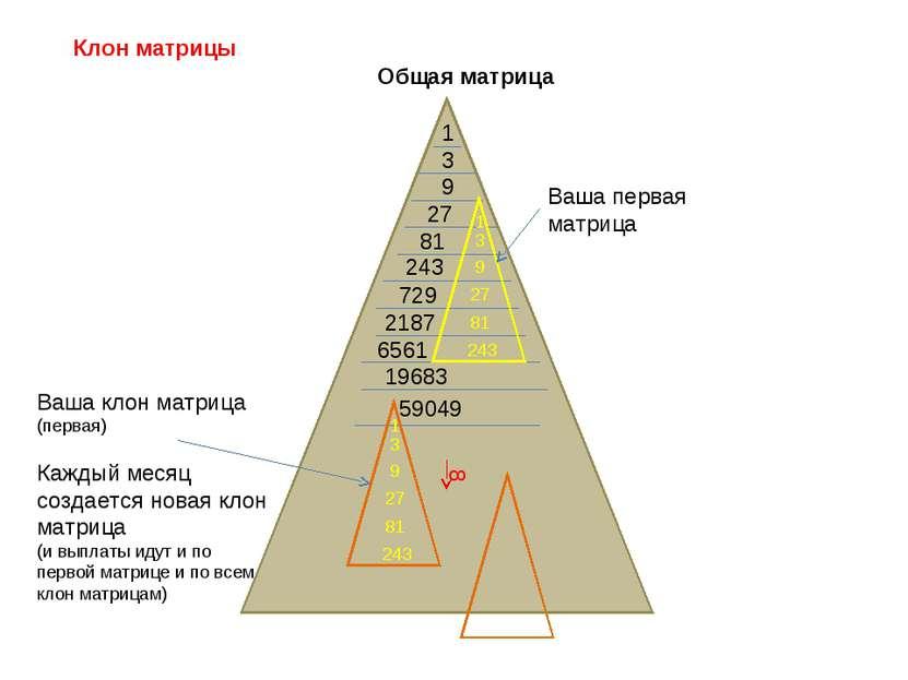 Клон матрицы Общая матрица 1 3 9 27 81 243 729 2187 6561 19683 8 1 3 9 27 81 ...