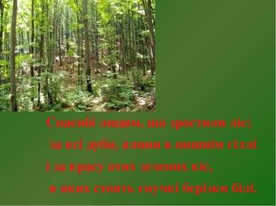 Спасибі людям, що зростили ліс: за всі дуби, ялини в пишнім гіллі і за красу ...