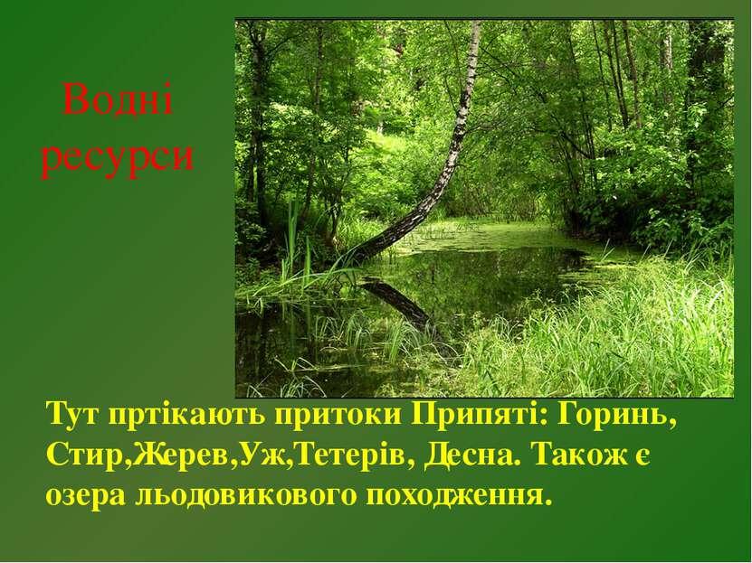 Водні ресурси Тут пртікають притоки Припяті: Горинь, Стир,Жерев,Уж,Тетерів, Д...
